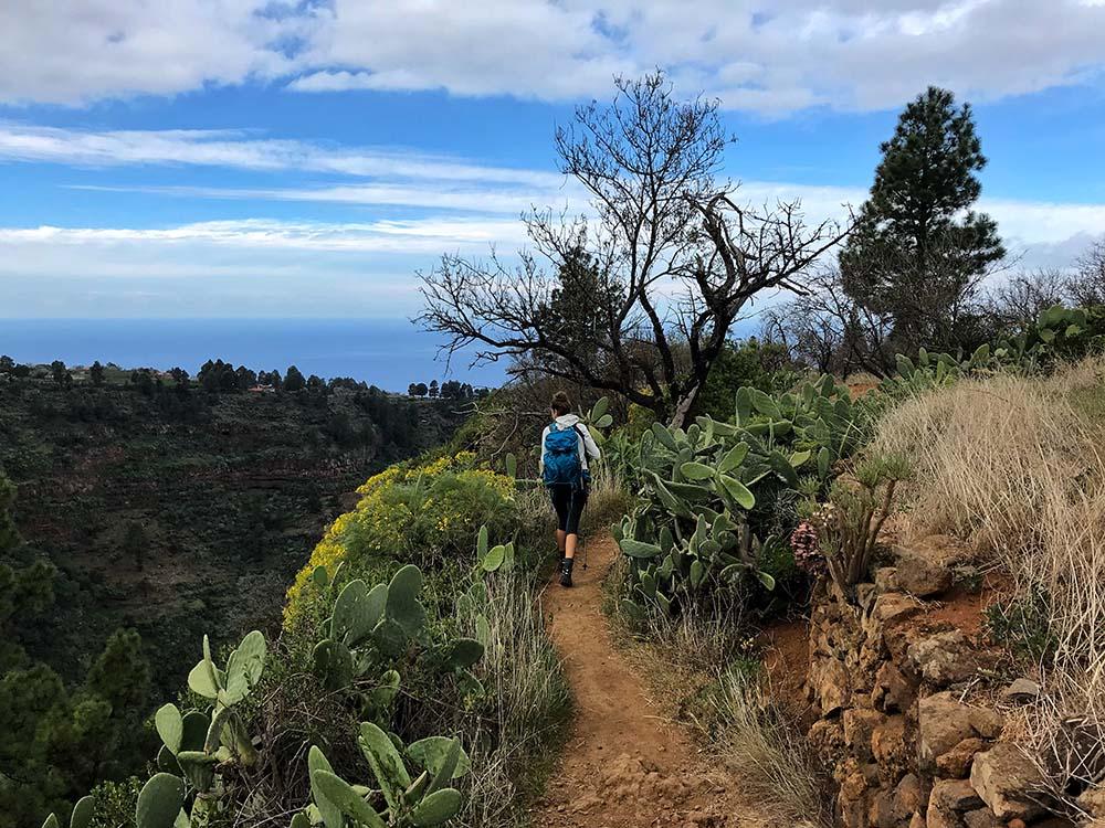 Wandern La Palma Kanaren Canary Vibes