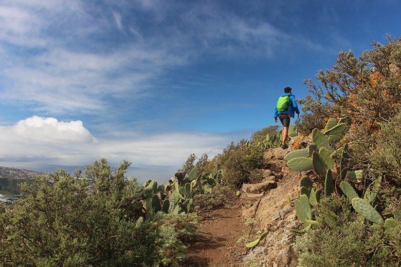 Wandern Punta del Hidalgo Teneriffa