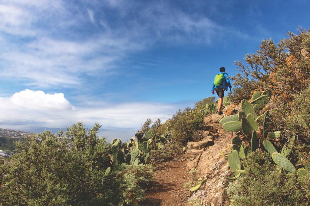 Wandern Tegueste Bajamar Teneriffa