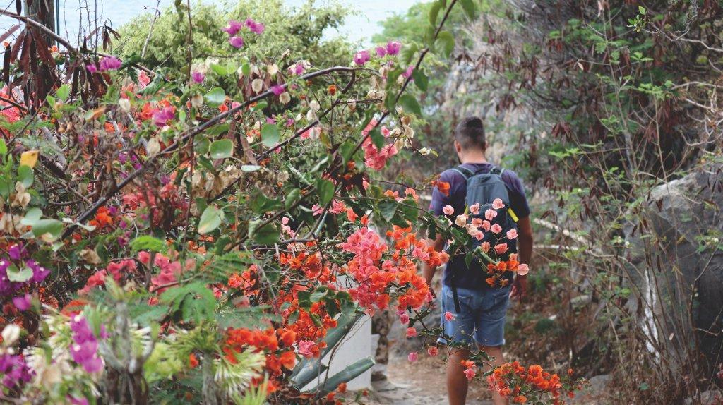 Wandern San Juan de La Rambla Teneriffa