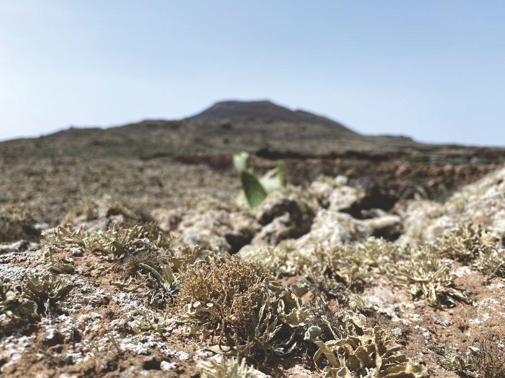Der Volcán de las Arenas im Norden von Fuerteventura