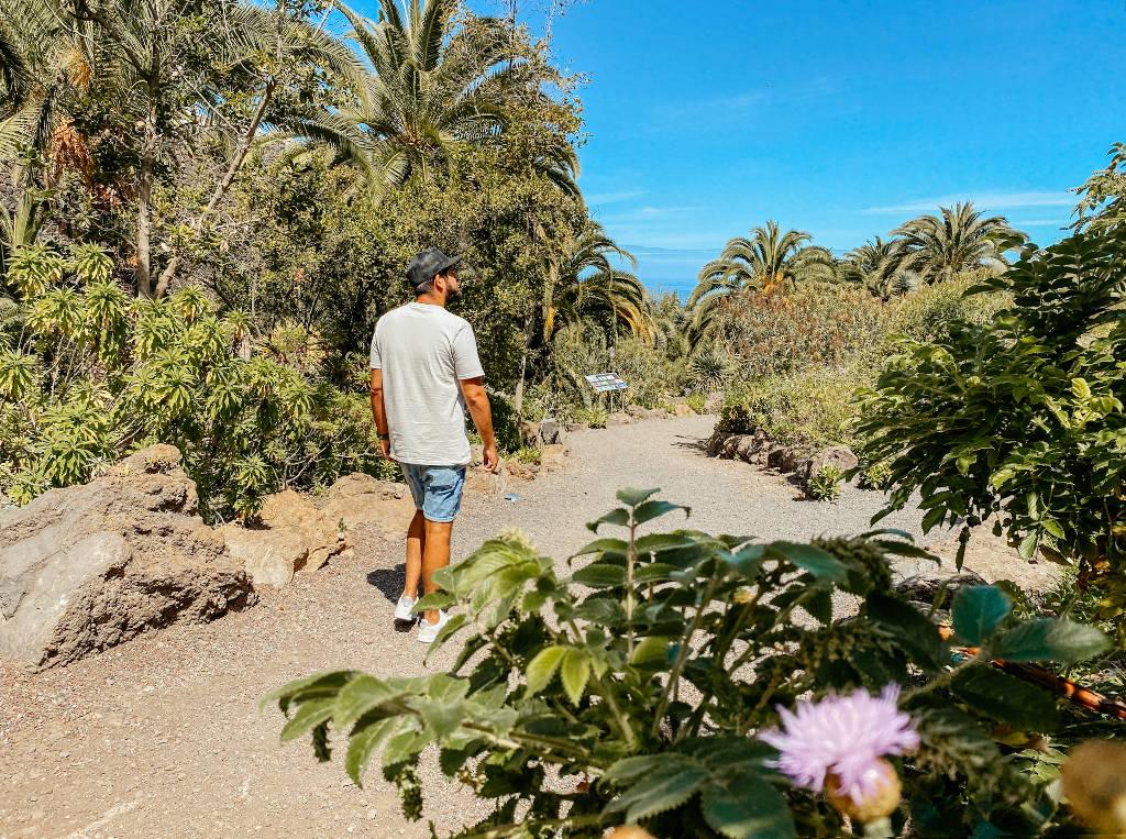 Parque del Drago in Icod de los Vinos auf Teneriffa